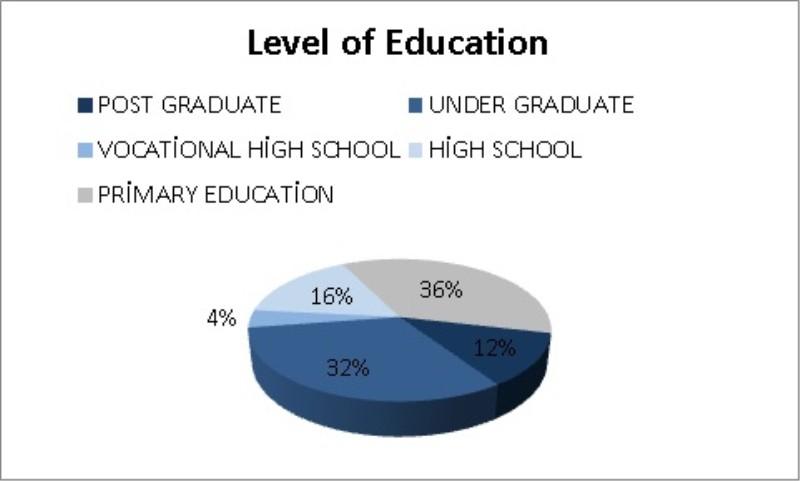 Eğitim seviyesi