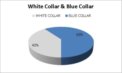 White and Blue Collars